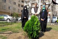 متن پیام تصویری دکتر احمدینژاد در روز درختکاری + فیلم