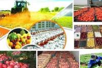 متوسط قیمت محصولات کشاورزی اعلام شد