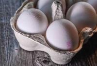 تخم مرغ شانه ای ۲۶ هزارتومان شد!