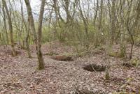 کاسبی قاچاقچیان جنگل با خاک