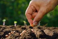۳ نامه وزارت جهاد کشاورزی برای ترخیص نهادههای تولید علوفه نتیجه نداد/ سکوت بانک مرکزی و وزارت صمت+اسناد