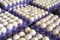فروش هر کیلو تخم مرغ بیش از ۱۱ هزار تومان گرانفروشی است